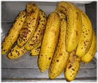 バナナ11本で180円