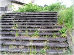 ウォーキングの途中、こんな階段を昇り降りしてみる