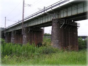 東北本線の橋の下にススキ