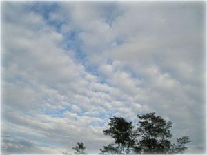空の写真1