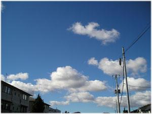 きょうはこんなに気持ちの良い青空。明日も晴れるって。(^^)