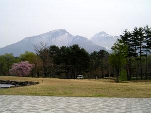 諸橋近代美術館前から磐梯山の残雪、桜、新緑を見る 贅沢な景色だねぇ 日本に生まれてよかった~\(^o^)/