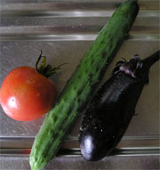 初めてとれた野菜