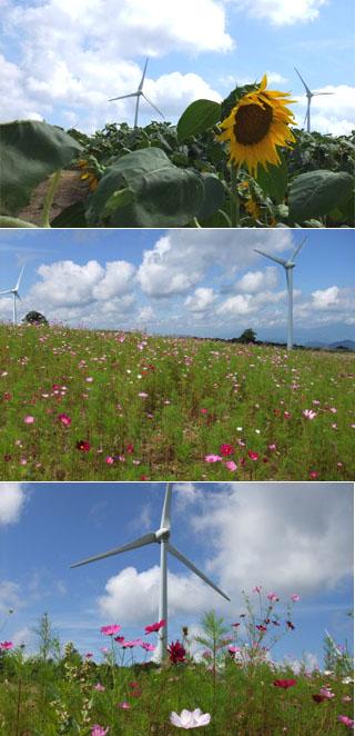風力発電その2
