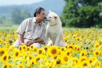 映画「星守る犬」