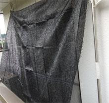 園芸用のネットで遮光