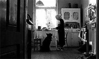 映画「木洩れ日の家で」