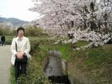 写真は去年のお花見の頃の平和な私