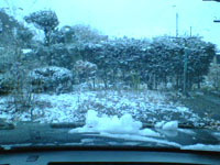 とうとう雪が降りました
